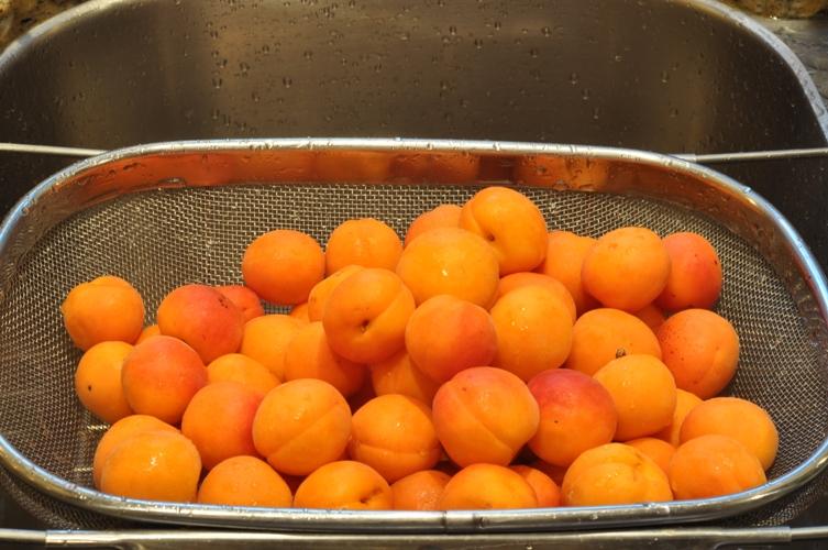 sugar in fruit dehydrating fruit